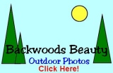 Backwoods Beauty Photos